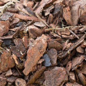 Sustrato Para Orquídeas Natural Rico En Materia Orgánica 1Kg Sustratos Orgánicos Vivir para sembrar